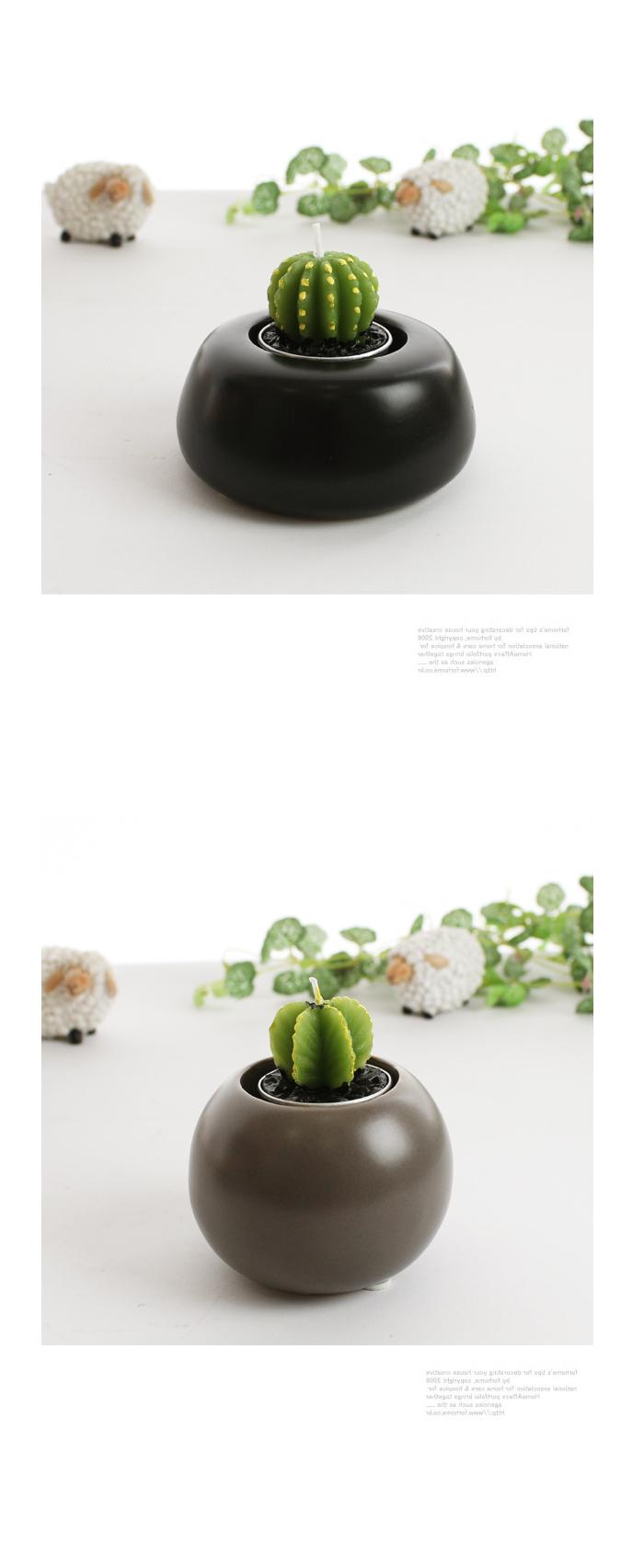 선인장모양 초 - 리버그린, 1,000원, 캔들, 아로마 캔들